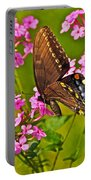 Late Summer Color Portable Battery Charger