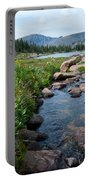 Late Summer Mountain Landscape Portable Battery Charger