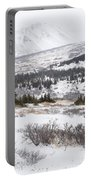 Late Winter Storm Portable Battery Charger