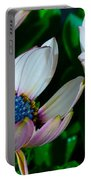 Lavender Frost African Daisy Portable Battery Charger