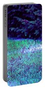 Lawn Blue Portable Battery Charger