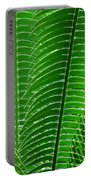Layered Ferns I Portable Battery Charger