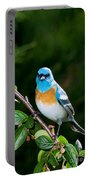 Lazuli Bunting Portable Battery Charger
