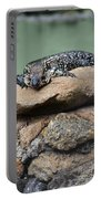 Lazy Lizard 2 Portable Battery Charger