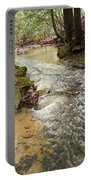 Lazy Mountain Stream Portable Battery Charger