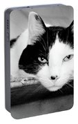 Le Cat Portable Battery Charger