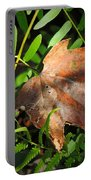 Leaf Among Ferns Portable Battery Charger