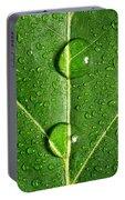 Leaf Dew Drop Number 10 Portable Battery Charger