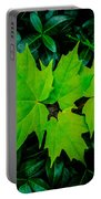 Leaf Overlay Portable Battery Charger