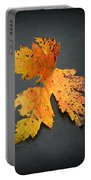 Leaf Portrait Portable Battery Charger