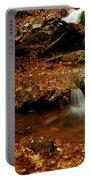Leaf Splatter Portable Battery Charger