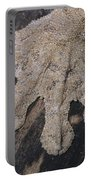 Leaf-tailed Gecko Foot Portable Battery Charger