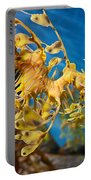 Leafy Sea Dragon Phycodurus Eques. Portable Battery Charger