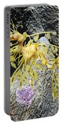 Leafy Seadragon Portable Battery Charger