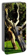Leaning Cedars Of West Chop Portable Battery Charger