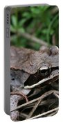 Wood Frog  Portable Battery Charger