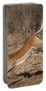 Leaping Impala Portable Battery Charger