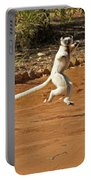 Leaping Lemur Portable Battery Charger