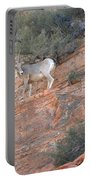 Learning How To Rock Climb Zion Portable Battery Charger