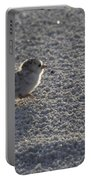 Least Tern Chick Portable Battery Charger