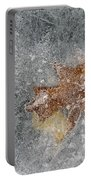 Leaves In Ice Portable Battery Charger