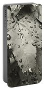 Leaves In Rain Portable Battery Charger