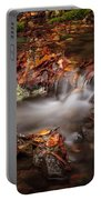Leaves In The Creek Portable Battery Charger