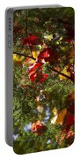Leaves On Evergreen Portable Battery Charger