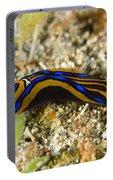 Leech Headshield Slug Portable Battery Charger