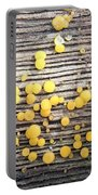 Lemon Drops Portable Battery Charger