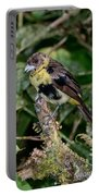 Lemon-rumped Tanager Molting Portable Battery Charger