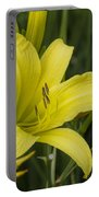 Lemon Yellow Daylily Blossom Portable Battery Charger