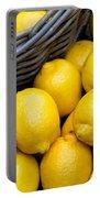 Lemons 01 Portable Battery Charger