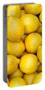 Lemons 02 Portable Battery Charger