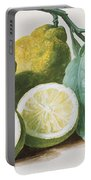 Lemons Portable Battery Charger by Pierre Joseph Redoute
