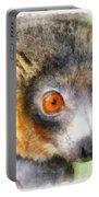 Lemur 004 Portable Battery Charger