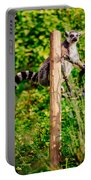 Lemur In The Green Portable Battery Charger