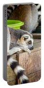 Lemur Portable Battery Charger
