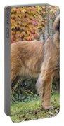 Leonberger Dog Portable Battery Charger