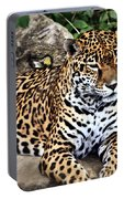Leopard At Rest Portable Battery Charger