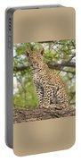 Leopard Cub Gaze Portable Battery Charger