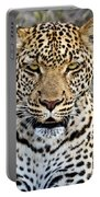 Wild Leopard In Botswana Portable Battery Charger