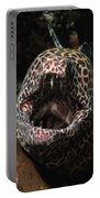 Leopard Moray Portable Battery Charger
