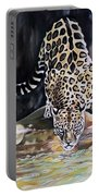 Leopard N.2 Portable Battery Charger