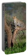 Leopard Panthera Pardus Sitting Portable Battery Charger