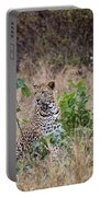 Leopard Sits Portable Battery Charger