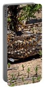 Lesser Nighthawk Chordeiles Acutipennis Portable Battery Charger