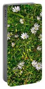 Lesser Stitchwort Near Lobster Cove In Gros Morne Np-nl Portable Battery Charger