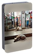 Let Sleeping Dogs Lie Where They May Portable Battery Charger