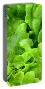 Lettuce Sing Portable Battery Charger